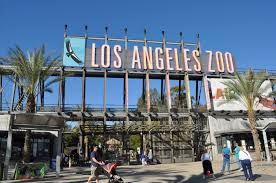 Los Angeles Zoo Application Online