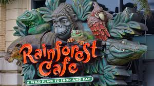 Rainforest Cafe Application Online