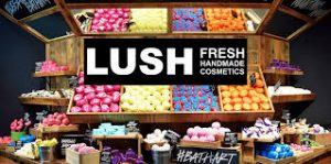 Lush Application Online & PDF