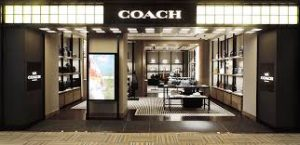 Coach Application Online & PDF