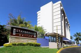 Staybridge Suites Application Online & PDF