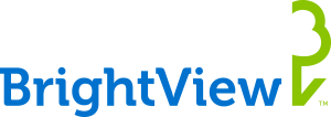 BrightView Application